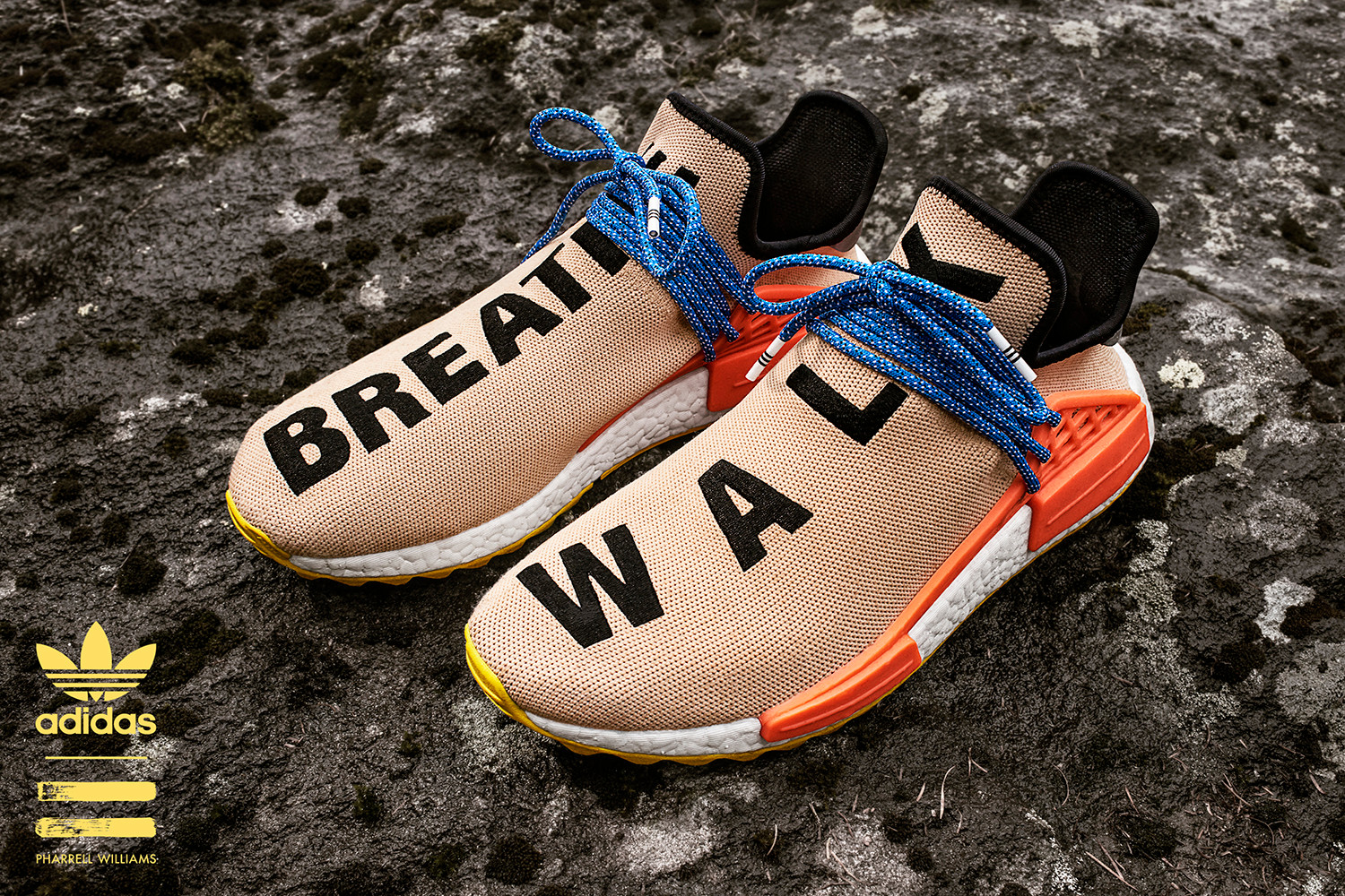 buy popular ee875 5d384 Coming Soon: Pharrell x Adidas NMD