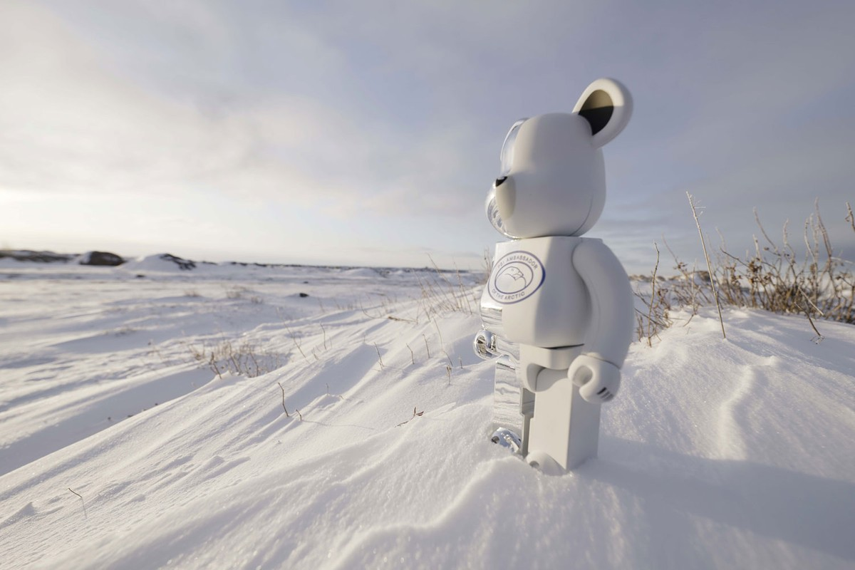 Special Release: Canada Goose Polar Bears International BE@RBRICK