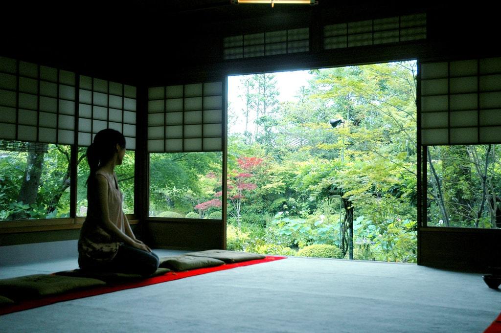 Living, Working, Playing and Surviving in Japan Tokyo Osaka NOVA AEON ECC GEOS Berlitz