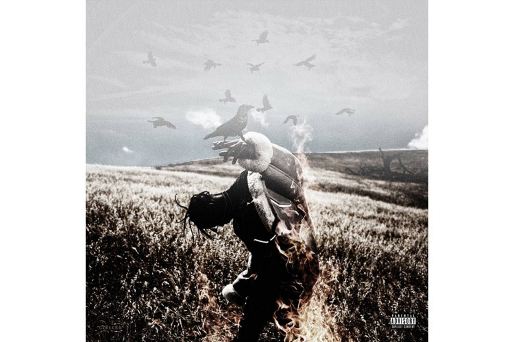 Stream Travis Scott Days Before Birds