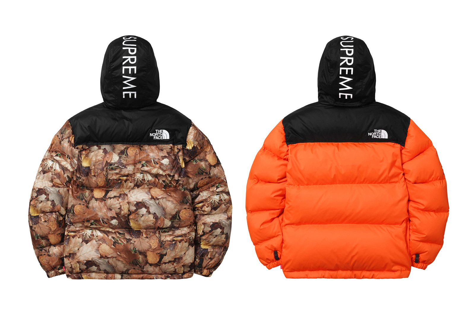 supreme-x-the-north-face-2016-fall-winter-collection-00000
