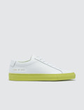 Common Projects Achilles Low Trainers With Colored Sole Picture