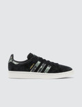 Adidas Originals Campus Picutre