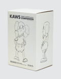 OriginalFake Kaws Companion – Robert Lazzarini Edition