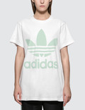 Adidas Originals Big Trefoil T-shirt Picture