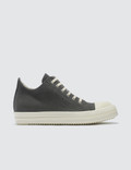 Rick Owens Drkshdw Low Sneakers Picture