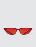 AMBUSH Molly Sunglasses Picture