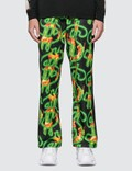 SSS World Corp Fire All Over Print Dollar Fire Track Pants Picutre