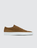 Common Projects Original Achilles Low In Suede Picture