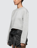 Alexander Wang.T Heavy French Terry Cropped Pullover Heather Grey Women