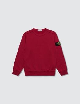 Stone Island Sweatshirts (Kid)