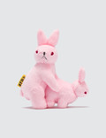 #FR2 Rabbits Toy Picture