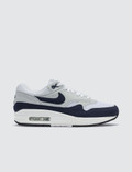 Nike W Air Max 1 Picture