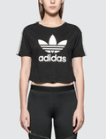 Adidas Originals T-shirt Cropped Picture
