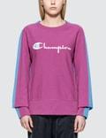 Champion Reverse Weave Crewneck Sweatshirt Picture
