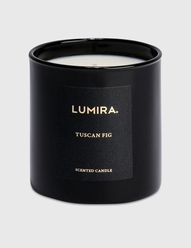 Lumira 향초 - Tuscan Fig N/a Life