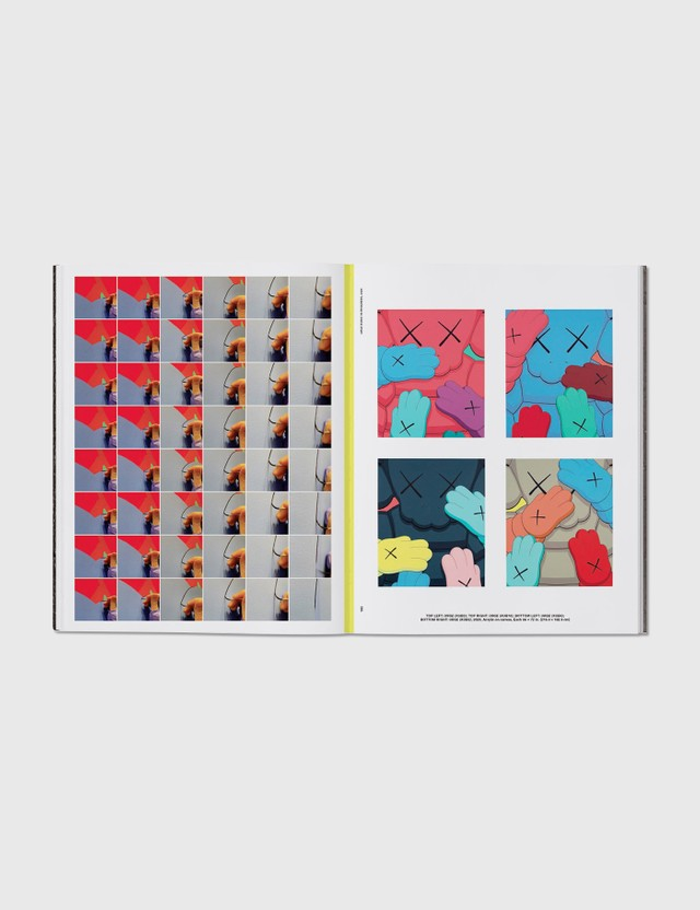 Phaidon KAWS: What Party (Pink Edition) Pink Life