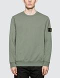 Stone Island Basic Sweatshirt Picture