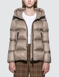 Moncler Hooded Down Jacket Picutre