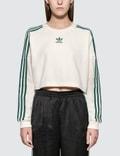 Adidas Originals Cropped Sweater Picutre