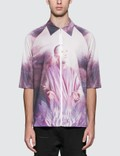 Cottweiler Spirit Polo Picture