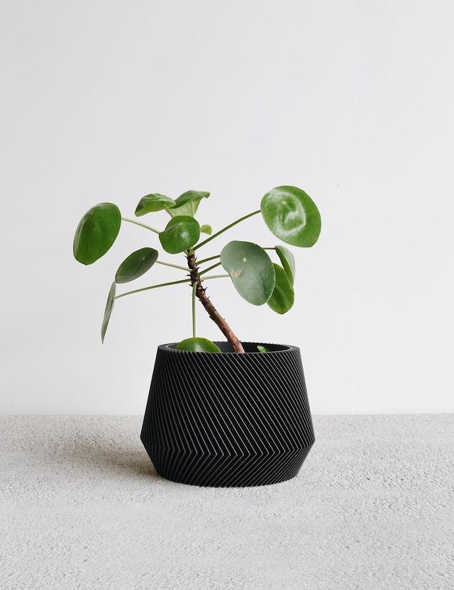 Minimum Design OSLO Indoor Planter Black Life