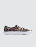 Vans Authentic 사진