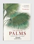Taschen Martius. The Book of Palms Picutre
