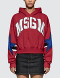 MSGM Stars Intarsia Rugby Hoodie Picutre