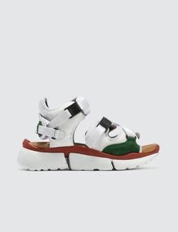 Chloé Sonnie Sandal Sneaker Picture