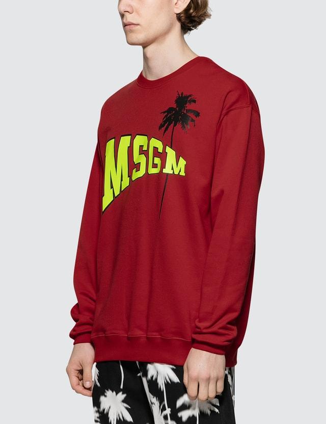 MSGM Logo with Palm Tree Print Sweatshirt