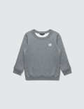 Acne Studios Mini Fairview F Sweatshirt Picture
