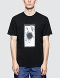 Stone Island S/S T-Shirt Picutre
