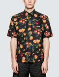 MSGM Orchard Print S/S Shirt Picture