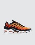 Nike Air Max Plus OG Picutre