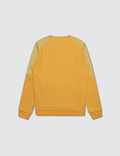 CP Company Sweatshirt (Small Kid) Golden Yellow Kids