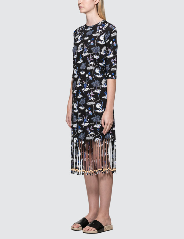Loewe Paula Circus Fringe Dress
