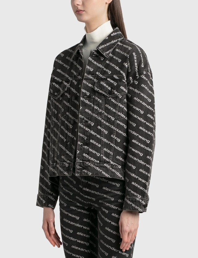 Alexander Wang.T Falling Back Jacket Grey Aged/white Women