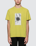 Stone Island S/S T-Shirt Picutre