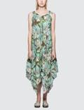 Loewe Paula Mermaid Strappy Dress Picture