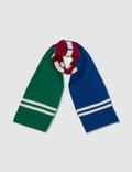 Polo Ralph Lauren Stadium Scarves Picture