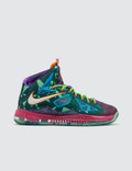 "Nike Lebron 10 Premium ""What The MVP"" Picutre"
