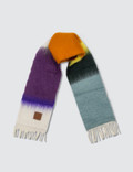 Loewe Stripes Scarf Picture