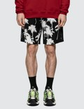 MSGM Palm Tree Print Shorts Picutre