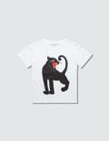 Mini Rodini Panther Sp T-Shirt Picutre