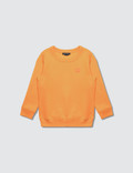 Acne Studios Mini Fairview F Sweatshirt Picutre
