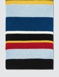 Loewe ELN Stripe Knit Scarf