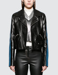 Loewe Blue Bands Leather Biker Jacket Picture