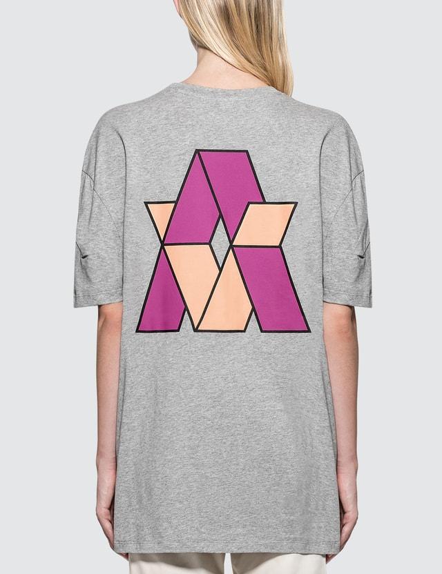 Aalto Heavy Jersey Logo S/S T-Shirt Grey Women