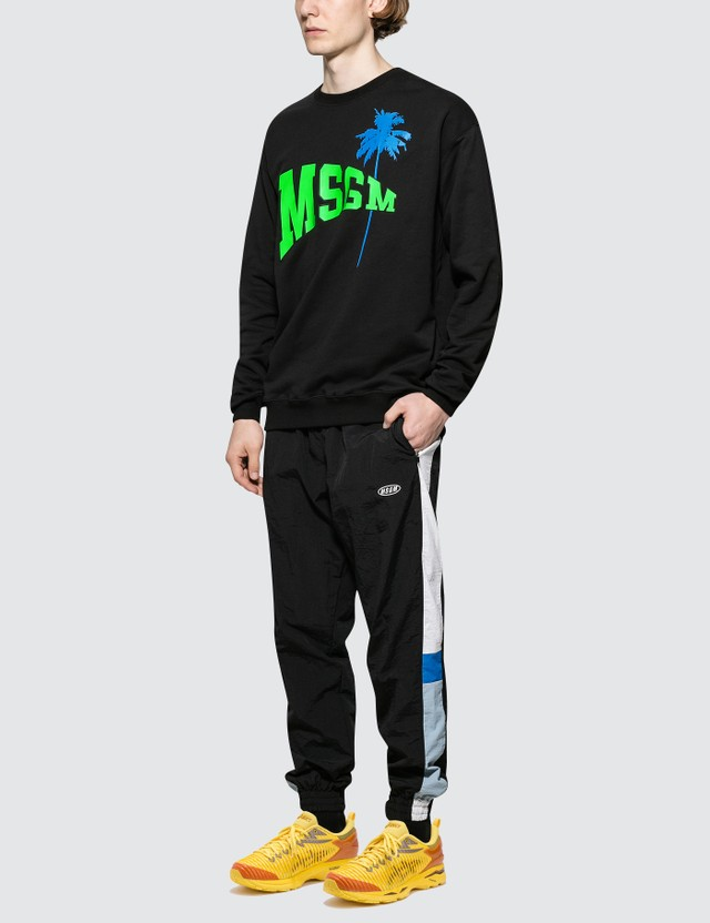 MSGM Logo with Palm Tree Print Sweatshirt